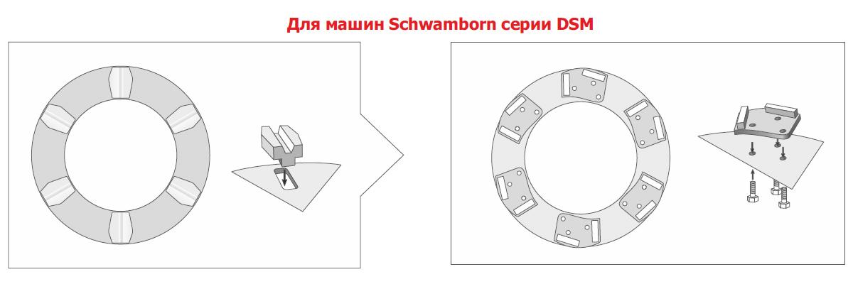 for-Schwamborn-DSM