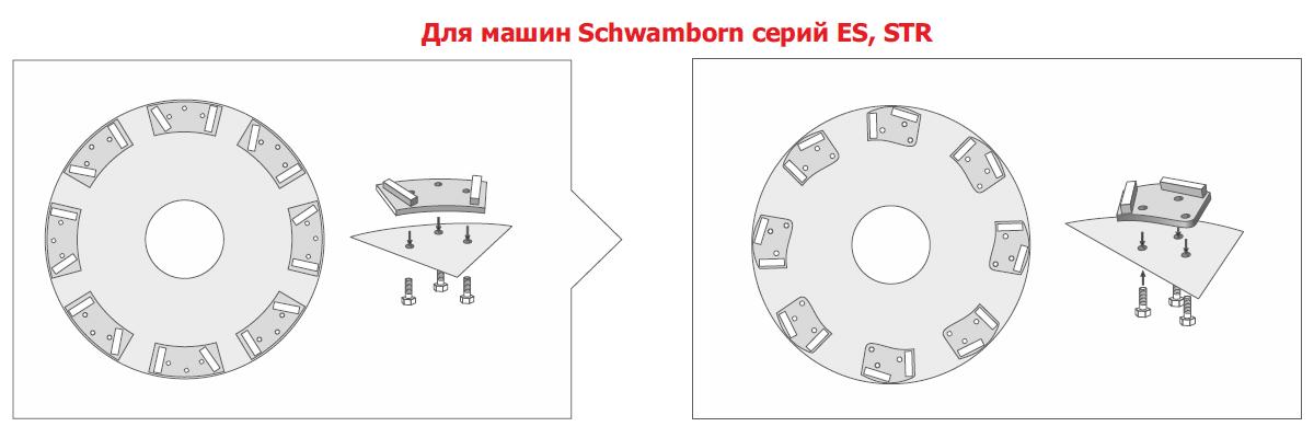 for-Schwamborn-ES-STR